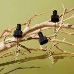 Humboldt Apothecary Featured on Medmen