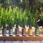 Why You'll Love Our Botanical Tinctures