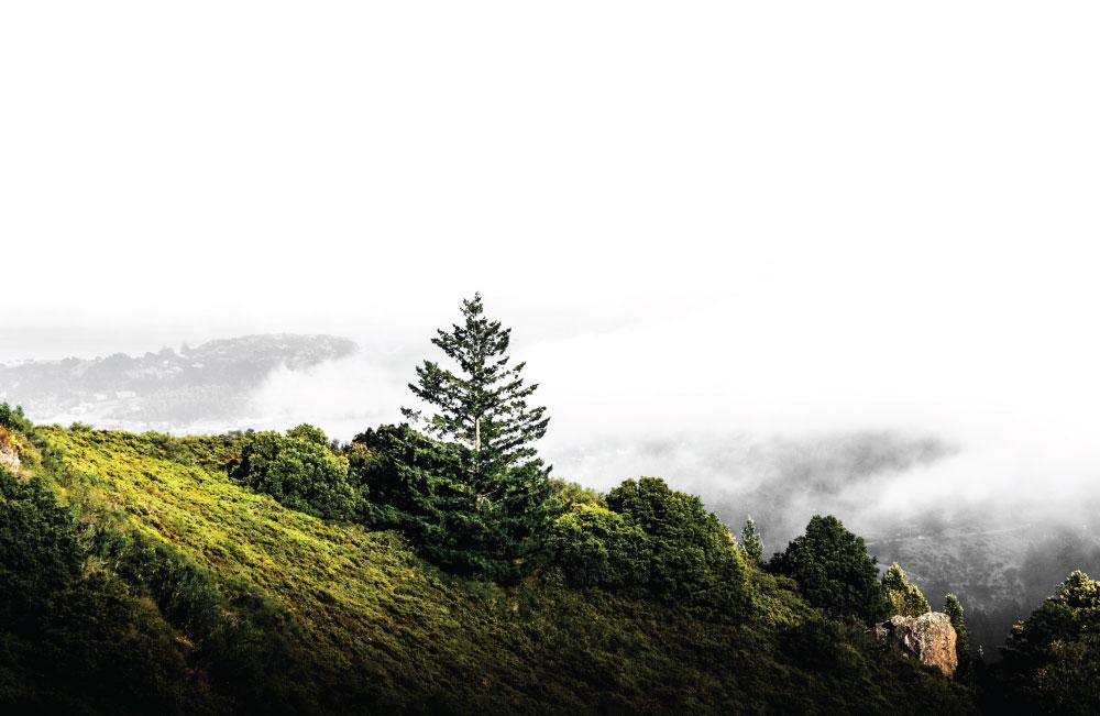 Outdoor Hills