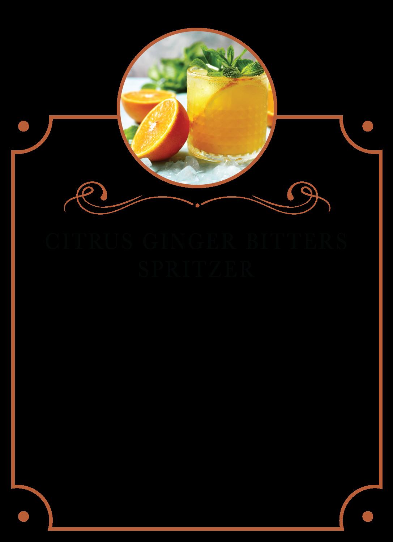 Citrus Ginger Spritzer